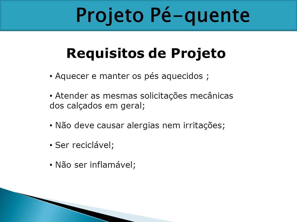 Requisitos de Projeto Aquecer e manter os pés aquecidos ; Atender as mesmas solicitações mecânicas dos calçados em geral; Não deve causar alergias nem