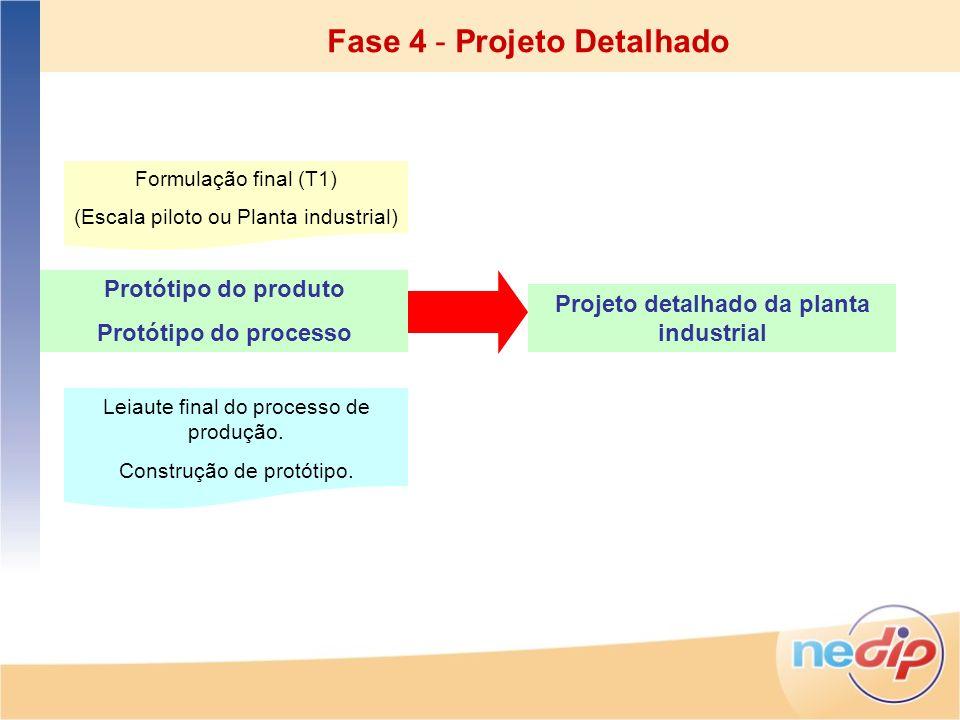Protótipo do produto Protótipo do processo Formulação final (T1) (Escala piloto ou Planta industrial) Leiaute final do processo de produção. Construçã