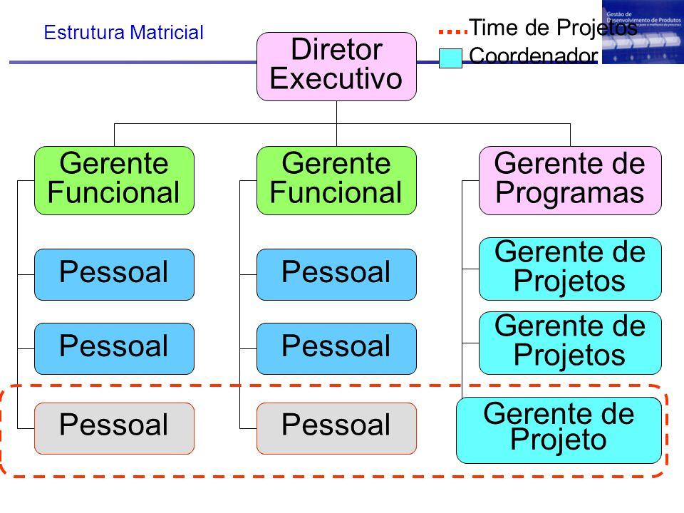 Diretor Executivo Gerente Funcional Gerente de Programas Pessoal Gerente de Projetos Pessoal Time de Projetos Coordenador Gerente de Projetos Gerente