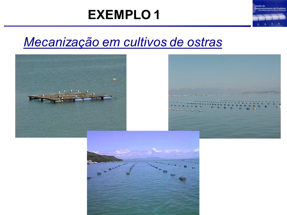 Mecanização em cultivos de ostras EXEMPLO 1