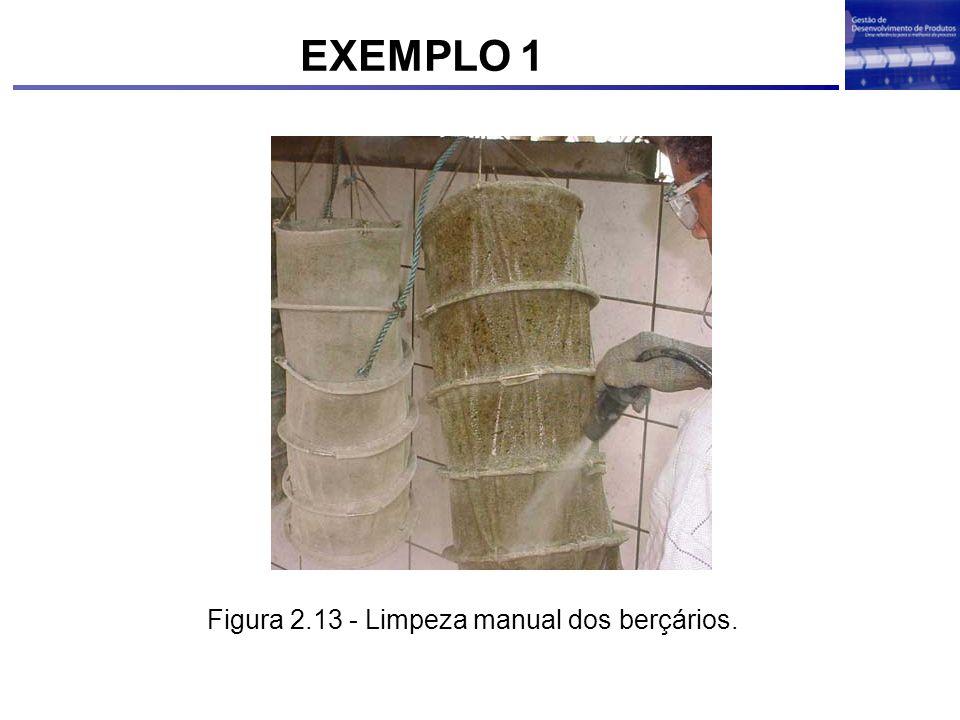 Figura 2.13 - Limpeza manual dos berçários. EXEMPLO 1