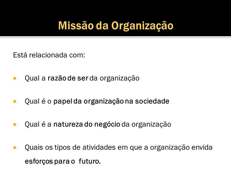 Está relacionada com: Qual a razão de ser da organização Qual é o papel da organização na sociedade Qual é a natureza do negócio da organização Quais os tipos de atividades em que a organização envida esforços para o futuro.