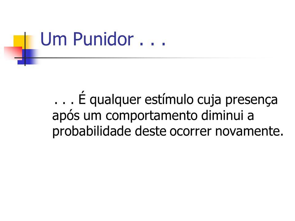 Um Punidor...... É qualquer estímulo cuja presença após um comportamento diminui a probabilidade deste ocorrer novamente.