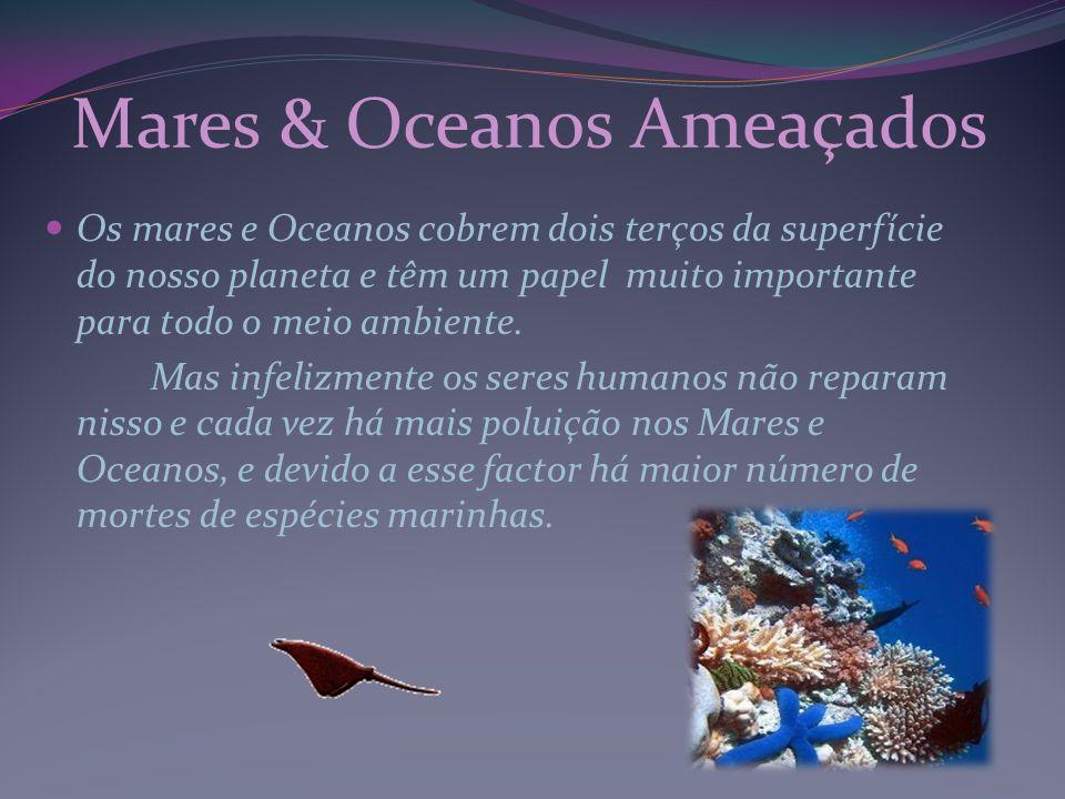 Os mares e Oceanos cobrem dois terços da superfície do nosso planeta e têm um papel muito importante para todo o meio ambiente. Mas infelizmente os se