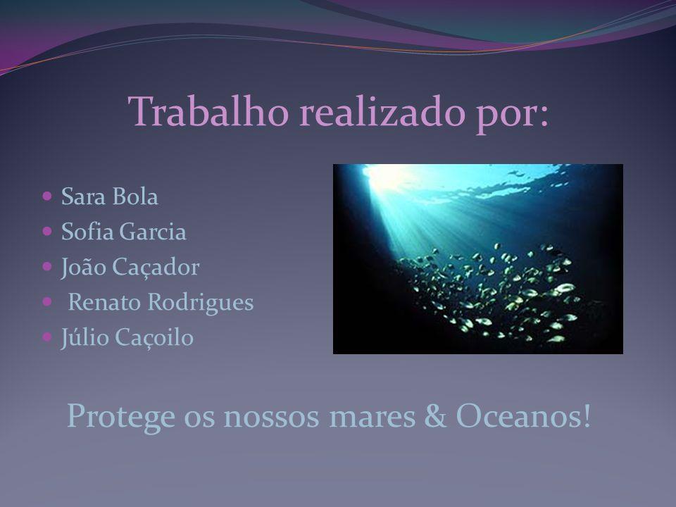 Trabalho realizado por: Sara Bola Sofia Garcia João Caçador Renato Rodrigues Júlio Caçoilo Protege os nossos mares & Oceanos!