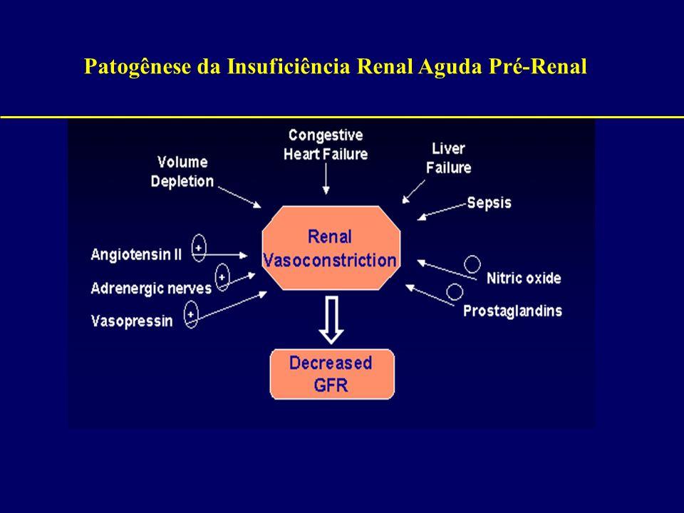 Patogênese da Insuficiência Renal Aguda Pré-Renal