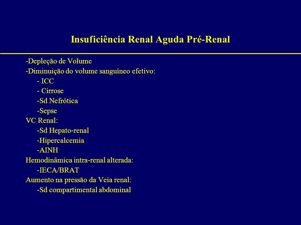 Insuficiência Renal Aguda Pré-Renal -Depleção de Volume -Diminuição do volume sanguíneo efetivo: - ICC - Cirrose -Sd Nefrótica -Sepse VC Renal: -Sd He