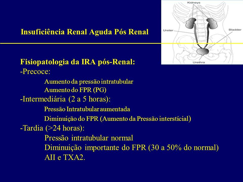 Insuficiência Renal Aguda Pós Renal Fisiopatologia da IRA pós-Renal: -Precoce: Aumento da pressão intratubular Aumento do FPR (PG) -Intermediária (2 a