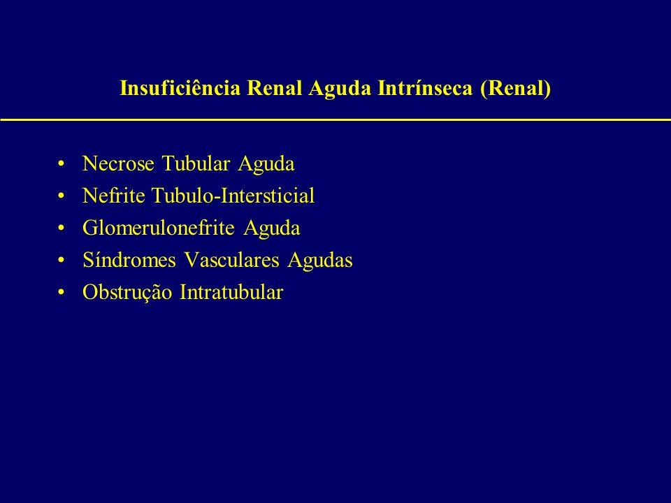 Insuficiência Renal Aguda Intrínseca (Renal) Necrose Tubular Aguda Nefrite Tubulo-Intersticial Glomerulonefrite Aguda Síndromes Vasculares Agudas Obst