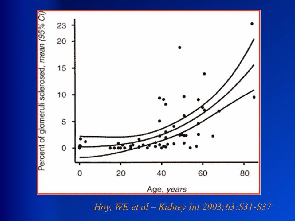Hoy, WE et al – Kidney Int 2003;63:S31-S37
