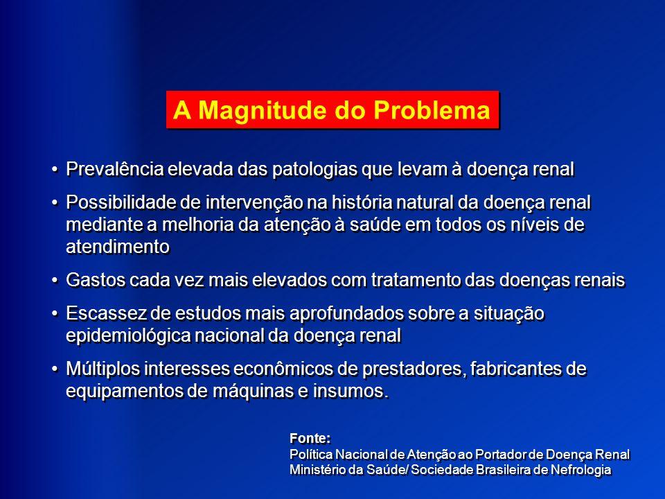A Magnitude do Problema Prevalência elevada das patologias que levam à doença renal Possibilidade de intervenção na história natural da doença renal m