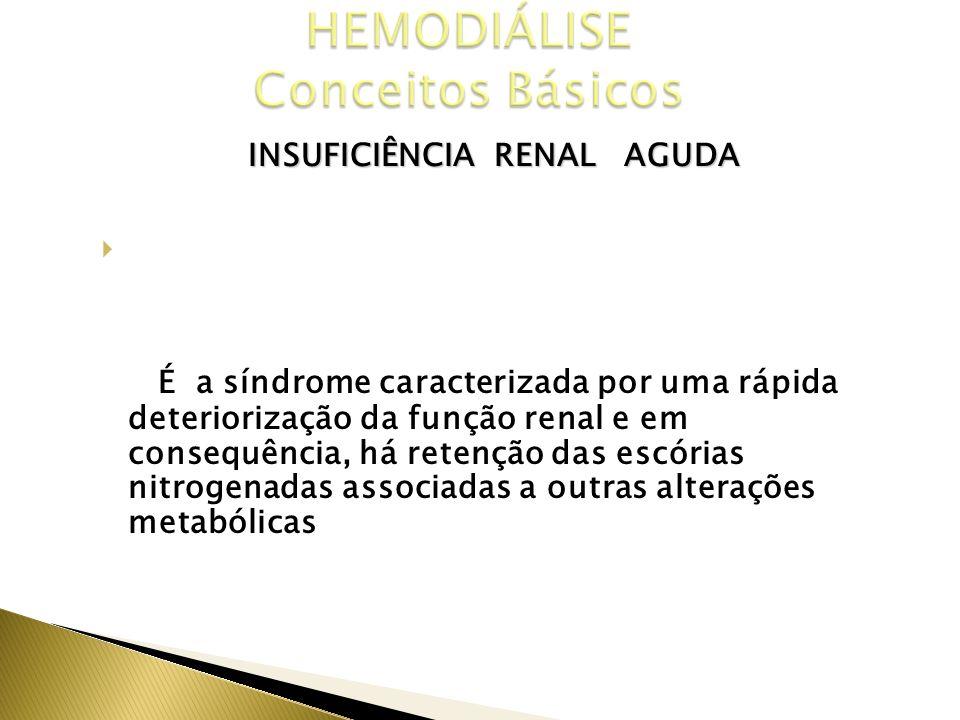 INSUFICIÊNCIA RENAL AGUDA CONCEITO É a síndrome caracterizada por uma rápida deteriorização da função renal e em consequência, há retenção das escória