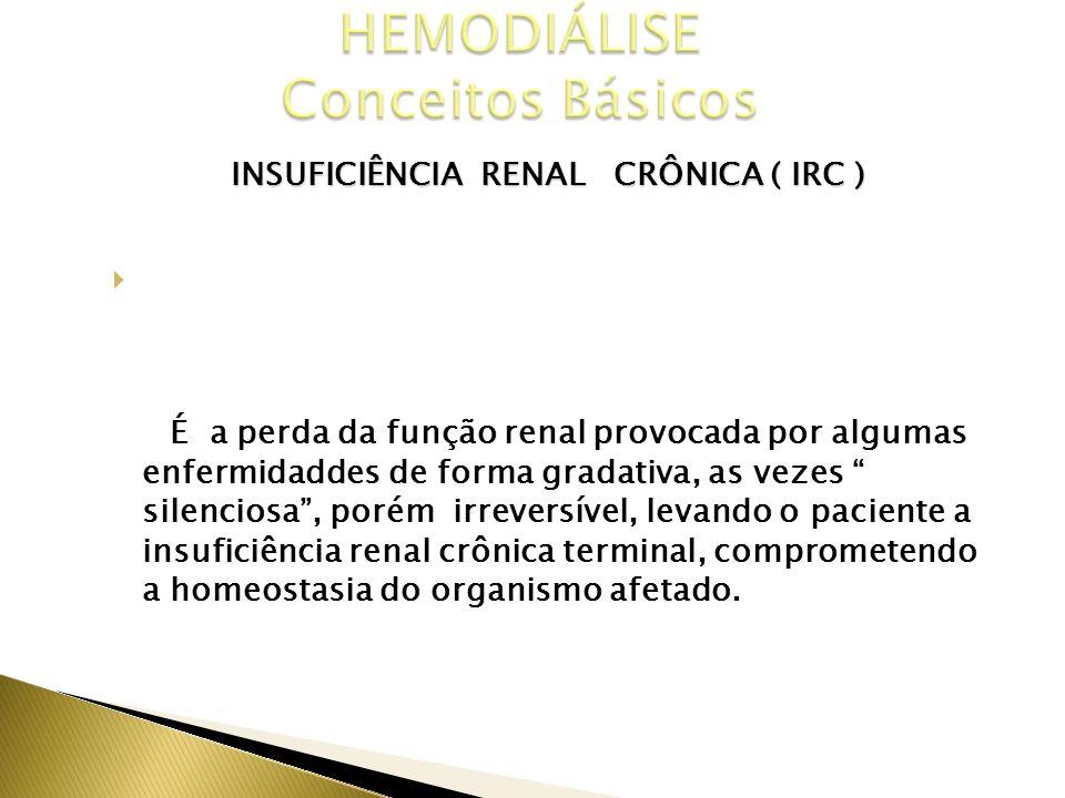 INSUFICIÊNCIA RENAL CRÔNICA ( IRC ) CONCEITO É a perda da função renal provocada por algumas enfermidaddes de forma gradativa, as vezes silenciosa, po