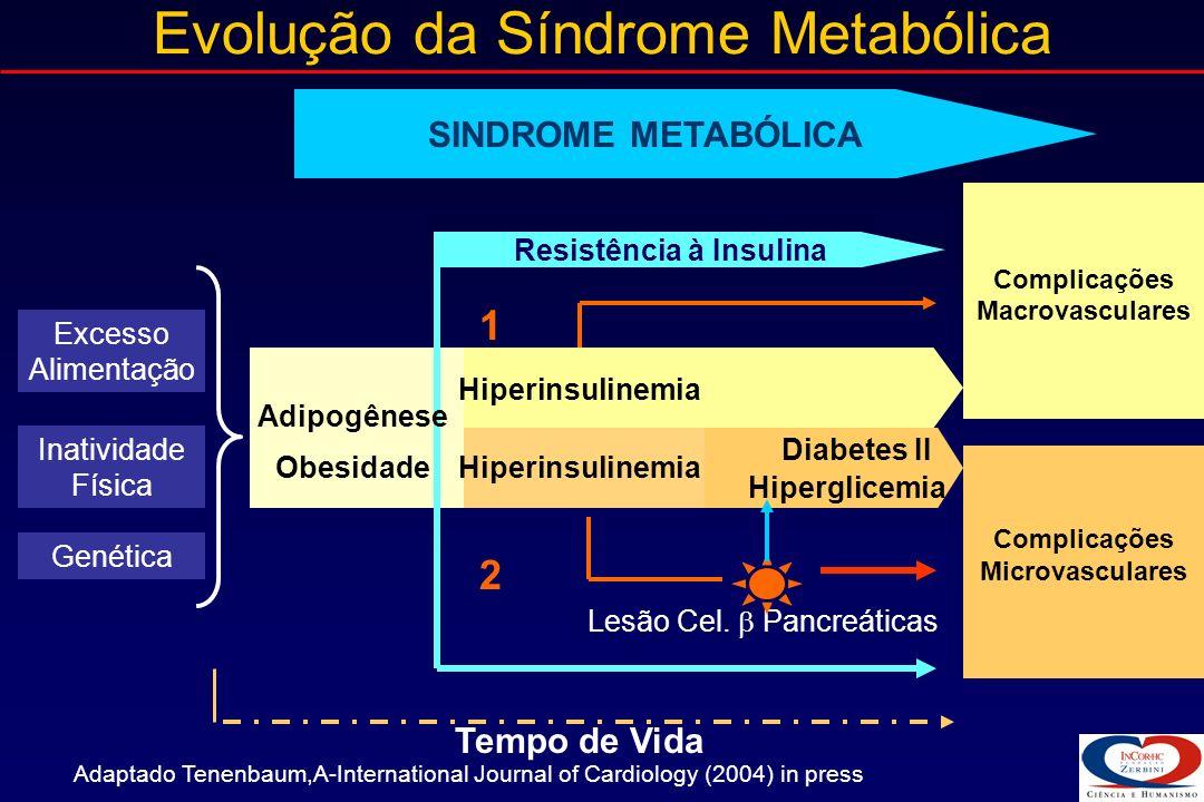 Influência dos Fatores da Síndrome Metabólica na Aterosclerose HipertensãoArterial Baixa Tolerância à Glicose Dislipidemia: - HDL baixo - LDL pequenas e densas - Hipertrigliceridemia Obesidade Centrípeta LDL <<< HDL LDL <<< HDL LDL Endotelio >> SHEAR STRESS >> SHEAR STRESS Monócito Macrófago MoléculasAdesão Célula Espumosa << Oxidação LDLModificado Citocinas Proliferaçãocelular Fatores de Crescimento, Metaloproteinases MCP-1MCP-1 Adaptado de Ross R.