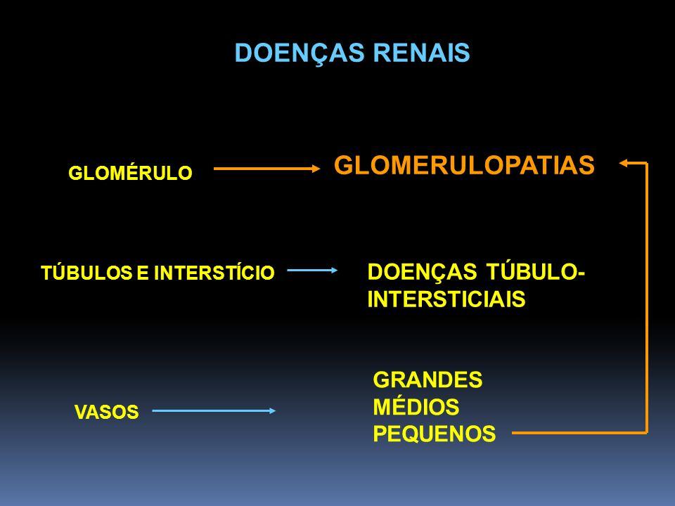 DOENÇAS RENAIS GLOMÉRULO GLOMERULOPATIAS GRANDES MÉDIOS PEQUENOS VASOS TÚBULOS E INTERSTÍCIO DOENÇAS TÚBULO- INTERSTICIAIS