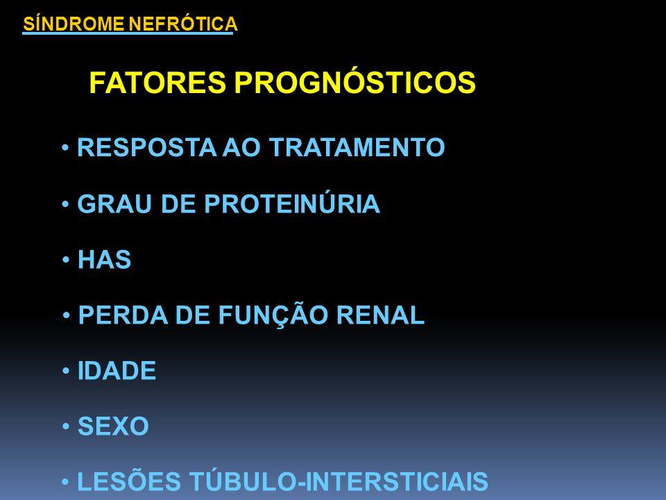 SÍNDROME NEFRÓTICA FATORES PROGNÓSTICOS LESÕES TÚBULO-INTERSTICIAIS RESPOSTA AO TRATAMENTO GRAU DE PROTEINÚRIA HAS PERDA DE FUNÇÃO RENAL IDADE SEXO