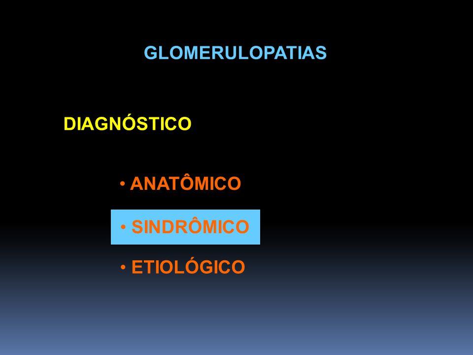 GLOMERULOPATIAS DIAGNÓSTICO ANATÔMICO SINDRÔMICO ETIOLÓGICO