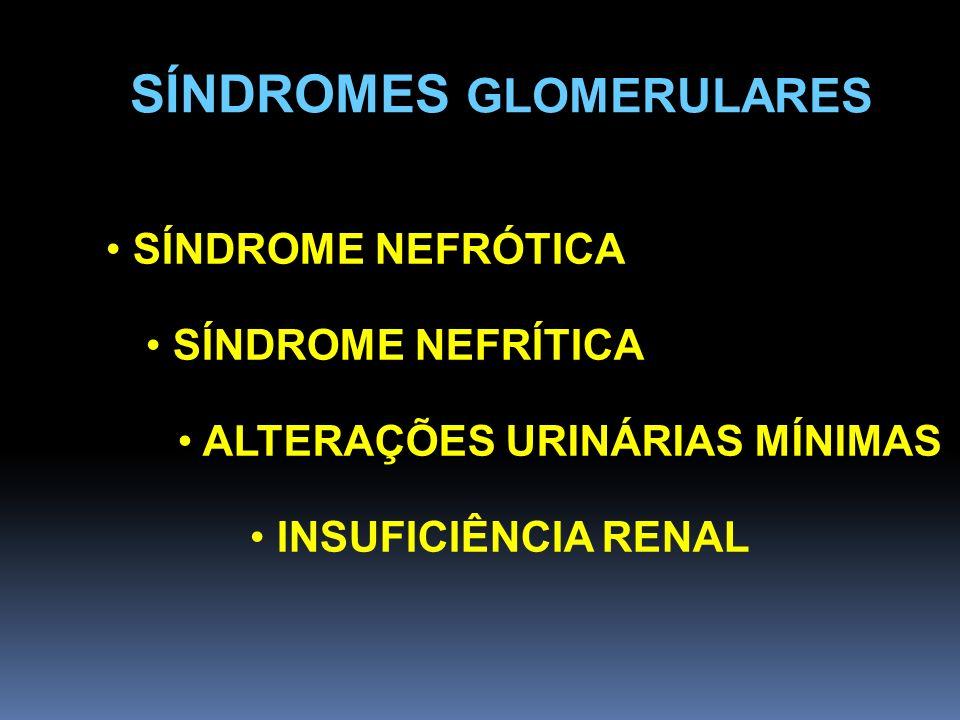 SÍNDROMES GLOMERULARES SÍNDROME NEFRÓTICA SÍNDROME NEFRÍTICA ALTERAÇÕES URINÁRIAS MÍNIMAS INSUFICIÊNCIA RENAL