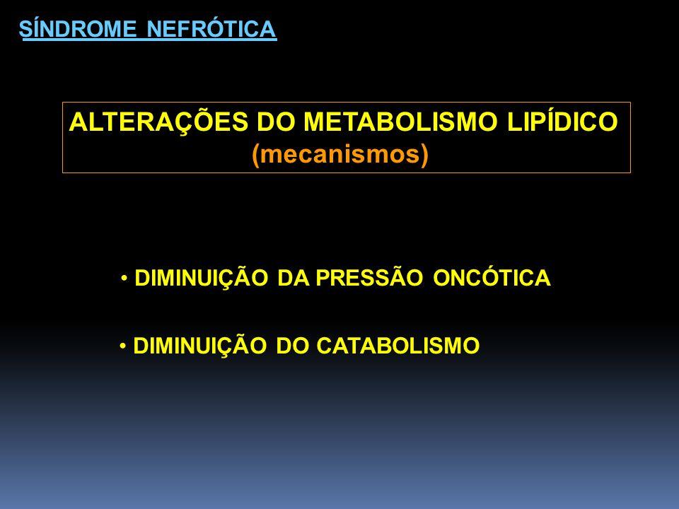 SÍNDROME NEFRÓTICA ALTERAÇÕES DO METABOLISMO LIPÍDICO (mecanismos) DIMINUIÇÃO DA PRESSÃO ONCÓTICA DIMINUIÇÃO DO CATABOLISMO