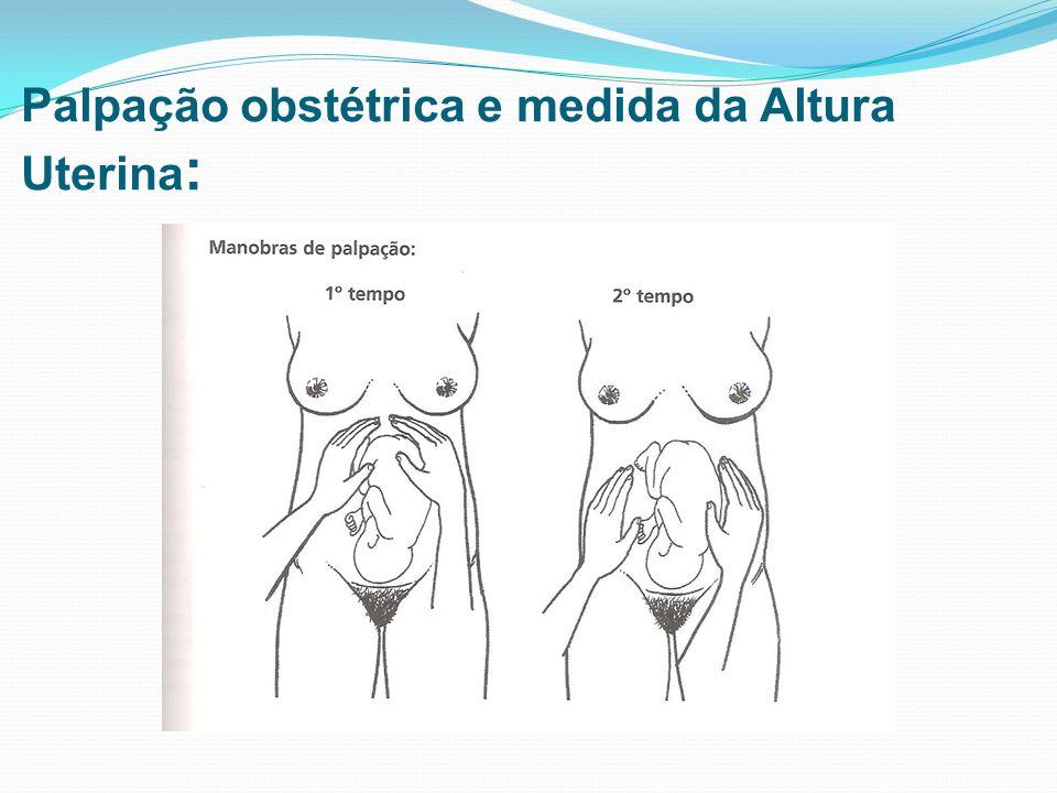 Palpação obstétrica e medida da Altura Uterina :