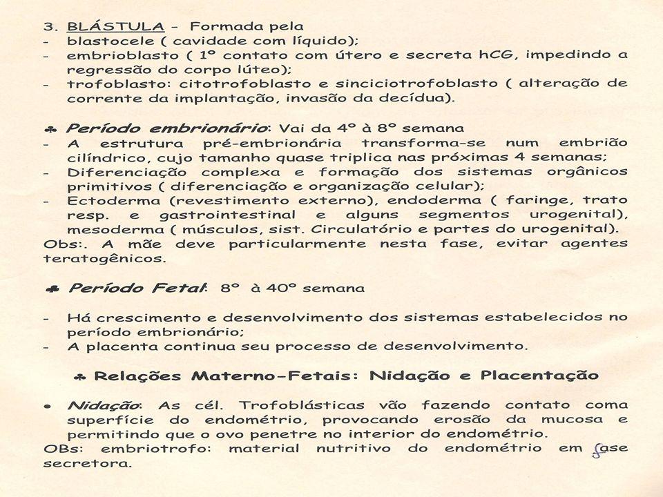 Palpação obstétrica e medida da Altura Uterina: Objetivos: Identificar o crescimento fetal, diagnosticar os desvios de mortalidade a partir da relação entre altura e idade gestacional e identificar a situação e a apresentação fetal.