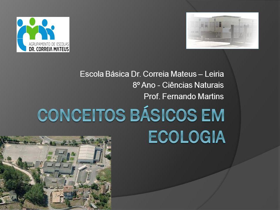 Escola Básica Dr. Correia Mateus – Leiria 8º Ano - Ciências Naturais Prof. Fernando Martins