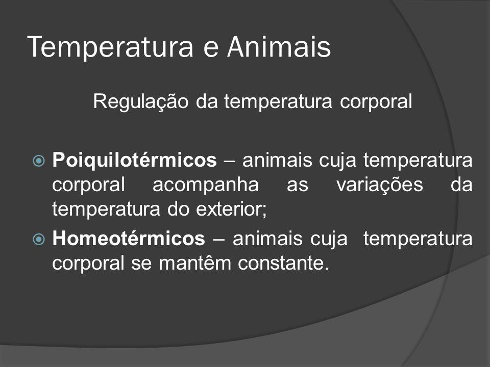 Temperatura e Animais Regulação da temperatura corporal Poiquilotérmicos – animais cuja temperatura corporal acompanha as variações da temperatura do