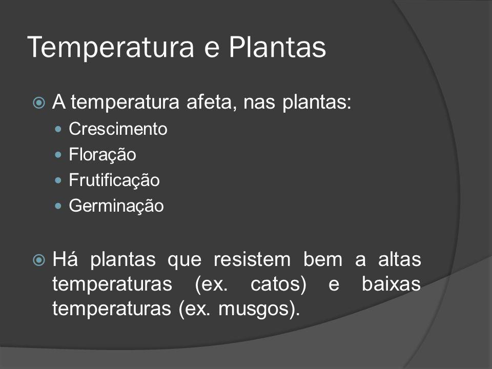 Temperatura e Plantas A temperatura afeta, nas plantas: Crescimento Floração Frutificação Germinação Há plantas que resistem bem a altas temperaturas
