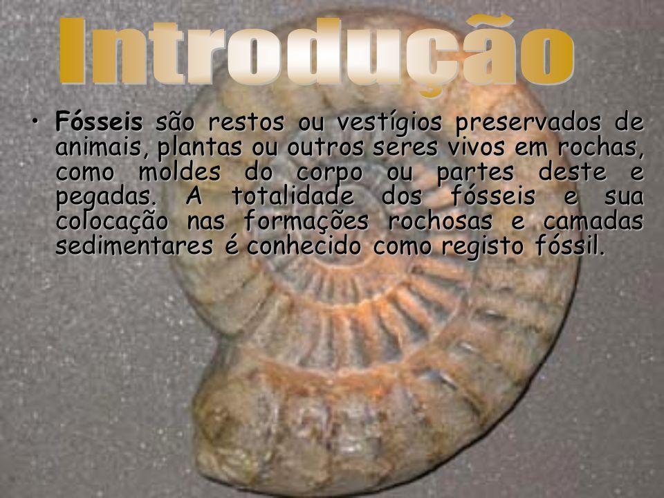A palavra fóssil deriva do termo latino fossilis que significa ser desenterrado .