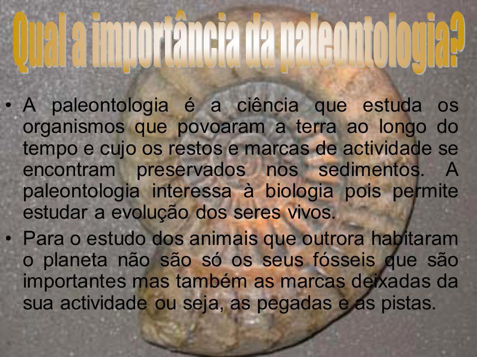 Moldagem: As partes duras dos organismos vão desaparecendo deixando nas rochas as suas marcas (impressões), ou seja, o organismo é destruído mas o molde persiste.
