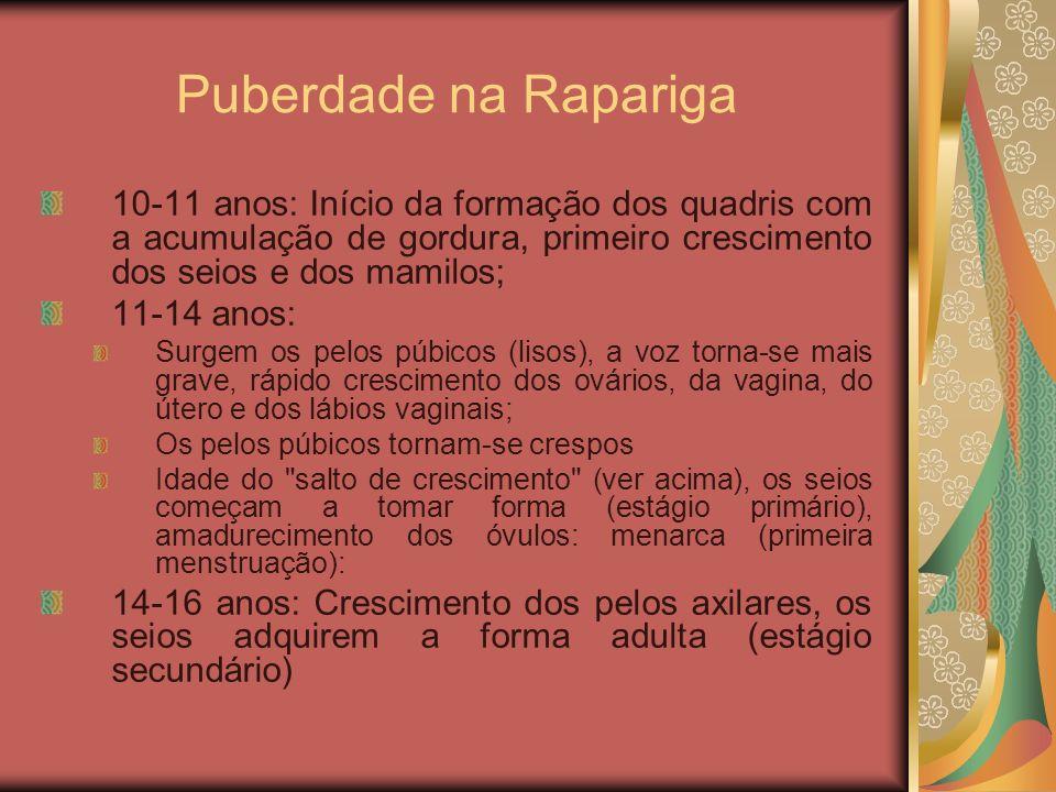 Puberdade na Rapariga 10-11 anos: Início da formação dos quadris com a acumulação de gordura, primeiro crescimento dos seios e dos mamilos; 11-14 anos
