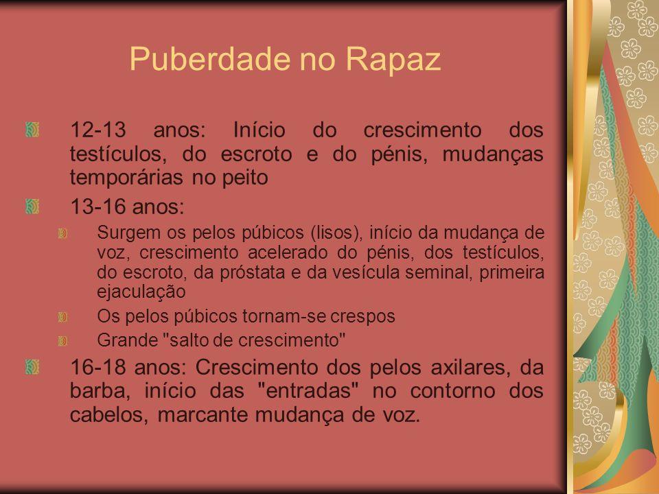 Puberdade no Rapaz 12-13 anos: Início do crescimento dos testículos, do escroto e do pénis, mudanças temporárias no peito 13-16 anos: Surgem os pelos
