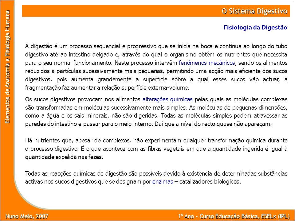 Nuno Melo, 2007 1º Ano - Curso Educação Básica, ESELx (IPL) Elementos de Anatomia e Fisiologia Humana O Sistema Digestivo Fisiologia da Digestão A dig