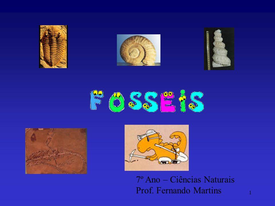 1 7º Ano – Ciências Naturais Prof. Fernando Martins