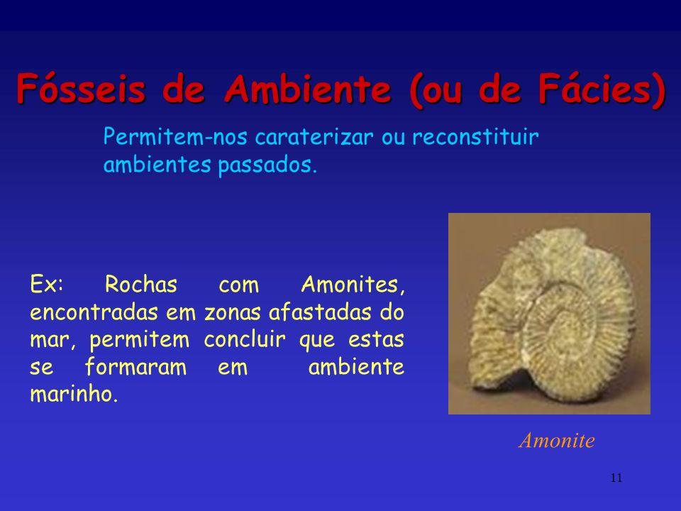 11 Fósseis de Ambiente (ou de Fácies) Ex: Rochas com Amonites, encontradas em zonas afastadas do mar, permitem concluir que estas se formaram em ambie
