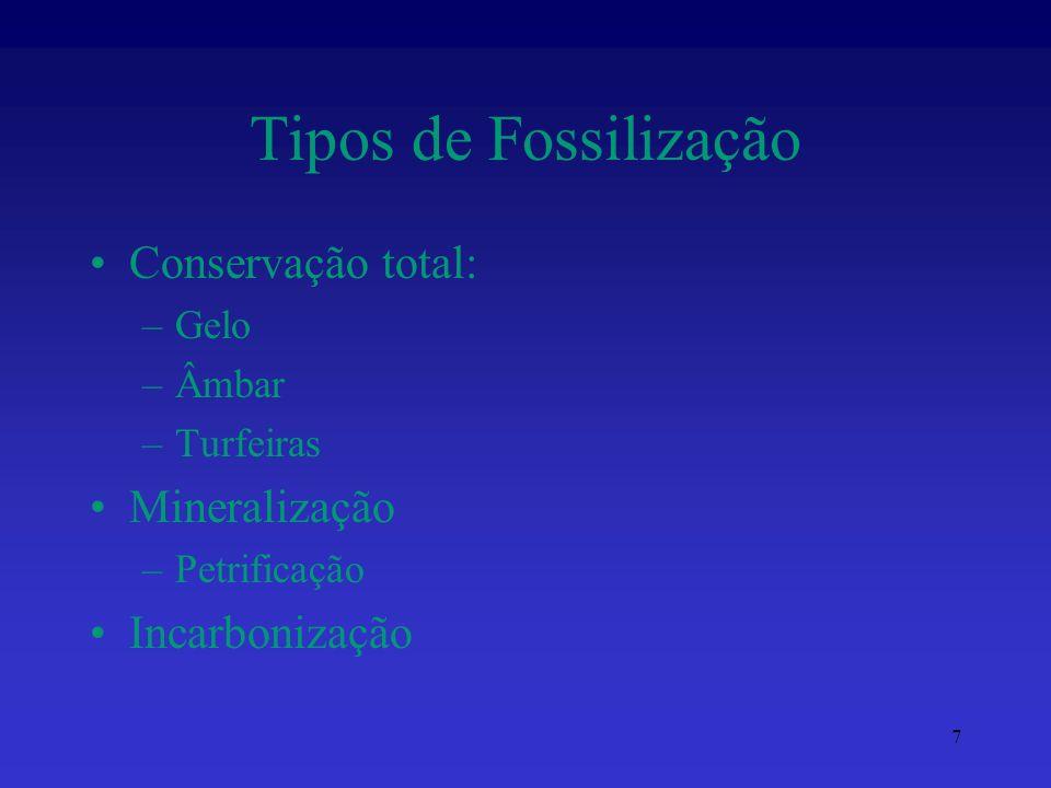 Tipos de Fossilização Conservação total: –Gelo –Âmbar –Turfeiras Mineralização –Petrificação Incarbonização 7