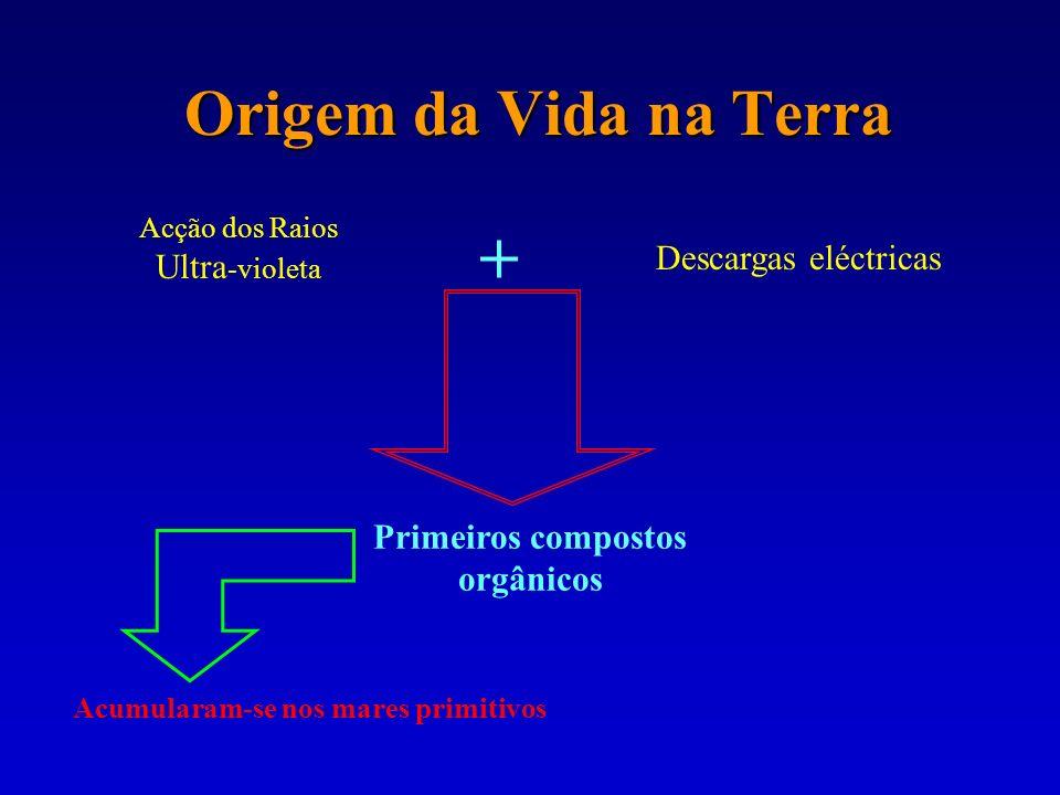 Origem da Vida na Terra Acção dos Raios Ultra -violeta Descargas eléctricas + Primeiros compostos orgânicos Acumularam-se nos mares primitivos