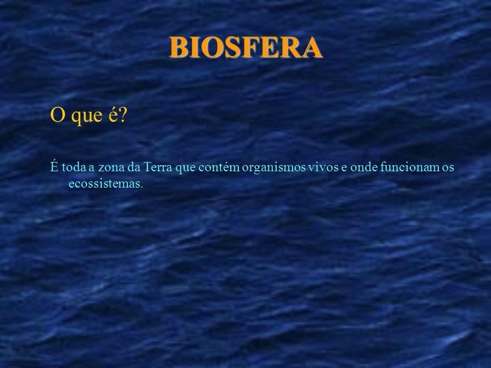 BIOSFERA O que é? É toda a zona da Terra que contém organismos vivos e onde funcionam os ecossistemas.