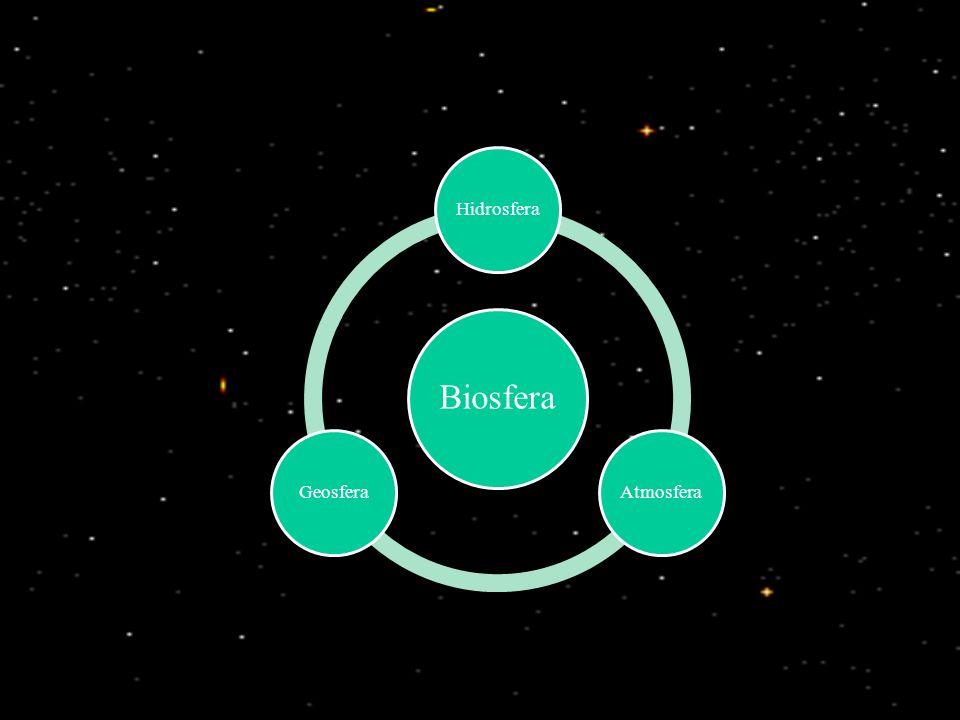 Biosfera HidrosferaAtmosferaGeosfera