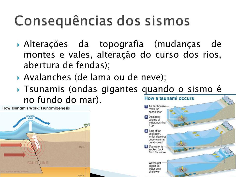 Alterações da topografia (mudanças de montes e vales, alteração do curso dos rios, abertura de fendas); Avalanches (de lama ou de neve); Tsunamis (ond