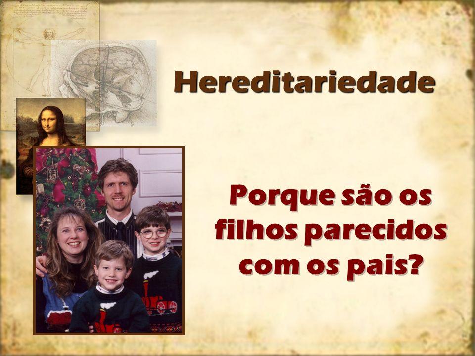 HereditariedadeHereditariedade Porque são os filhos parecidos com os pais?