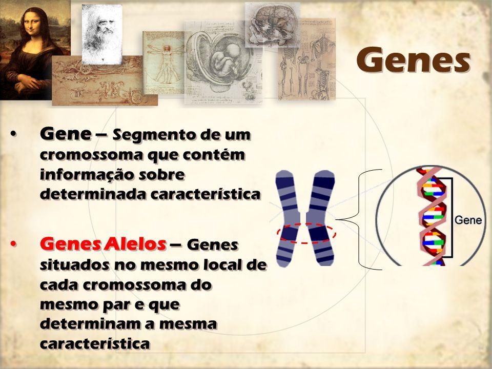 Genes Gene – Segmento de um cromossoma que contém informação sobre determinada característica Genes Alelos – Genes situados no mesmo local de cada cro