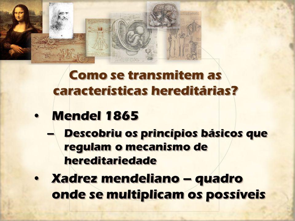 Como se transmitem as características hereditárias? Mendel 1865 –Descobriu os princípios básicos que regulam o mecanismo de hereditariedade Xadrez men