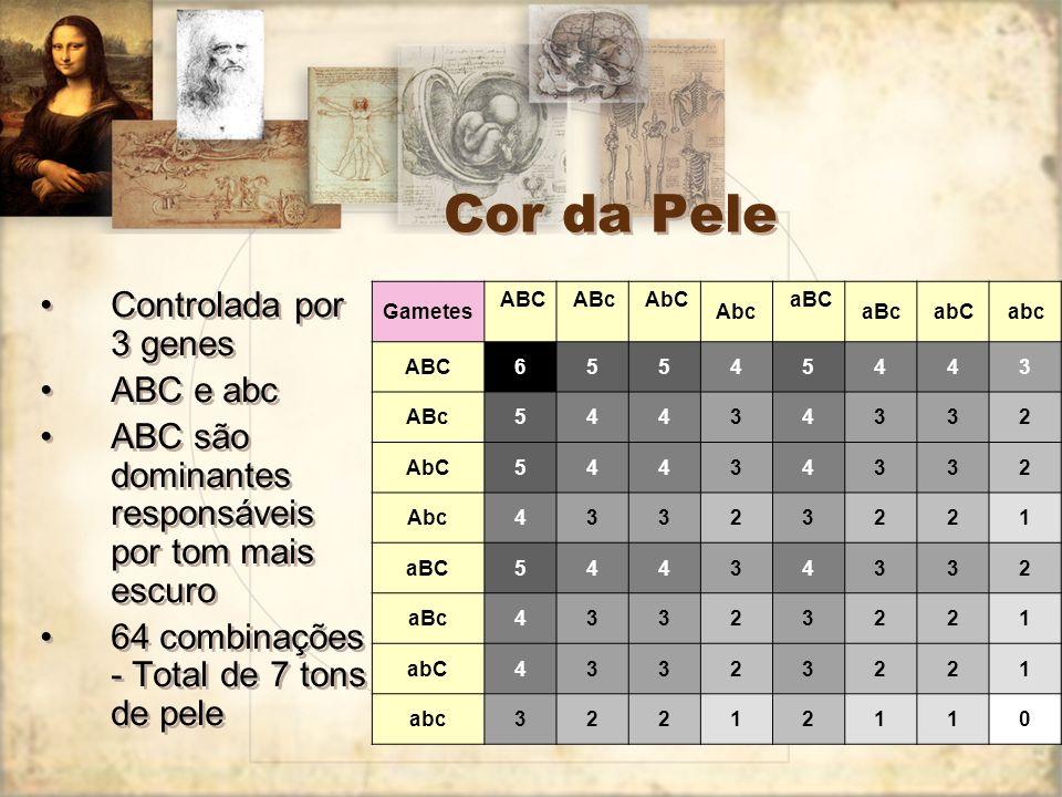 Cor da Pele Controlada por 3 genes ABC e abc ABC são dominantes responsáveis por tom mais escuro 64 combinações - Total de 7 tons de pele Controlada p