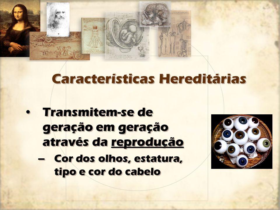 Características Hereditárias Transmitem-se de geração em geração através da reprodução –Cor dos olhos, estatura, tipo e cor do cabelo Transmitem-se de