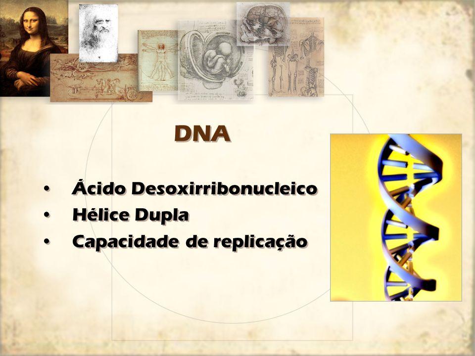 Como está organizado o material genético.