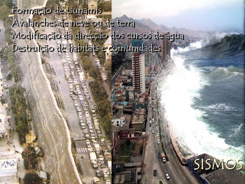 Formação de tsunamis Avalanches de neve ou de terra Modificação da direcção dos cursos de água Destruição de habitats e comunidades Formação de tsunam
