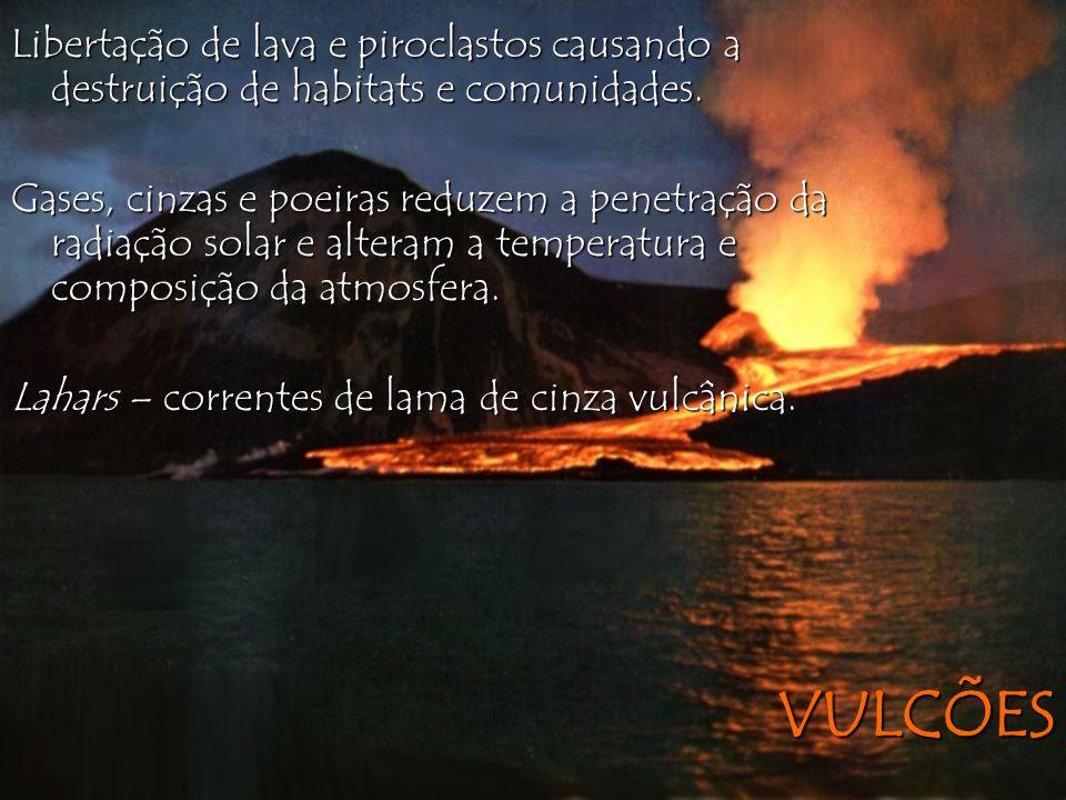 VULCÕES Libertação de lava e piroclastos causando a destruição de habitats e comunidades. Gases, cinzas e poeiras reduzem a penetração da radiação sol