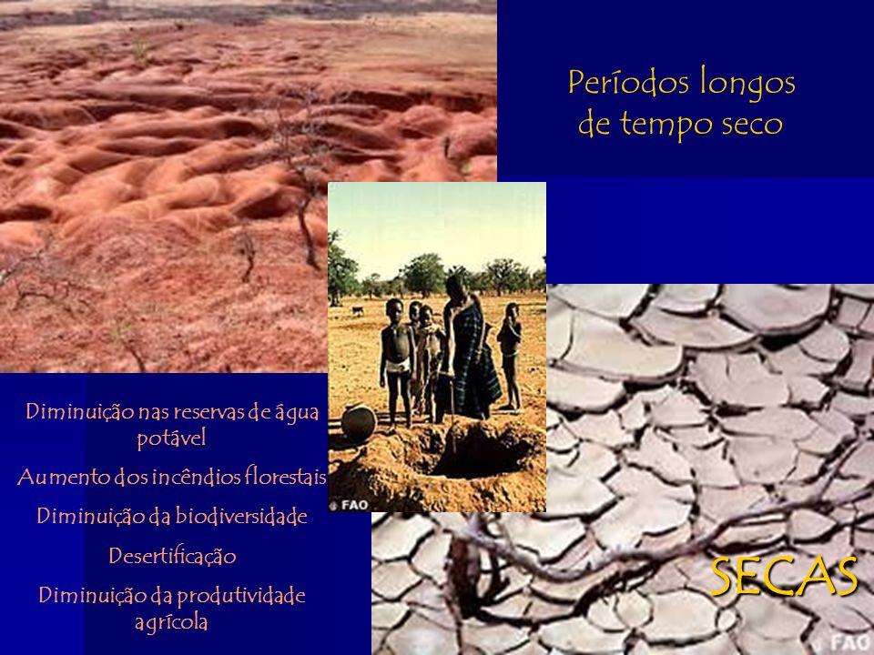 SECAS Períodos longos de tempo seco Diminuição nas reservas de água potável Aumento dos incêndios florestais Diminuição da biodiversidade Desertificaç