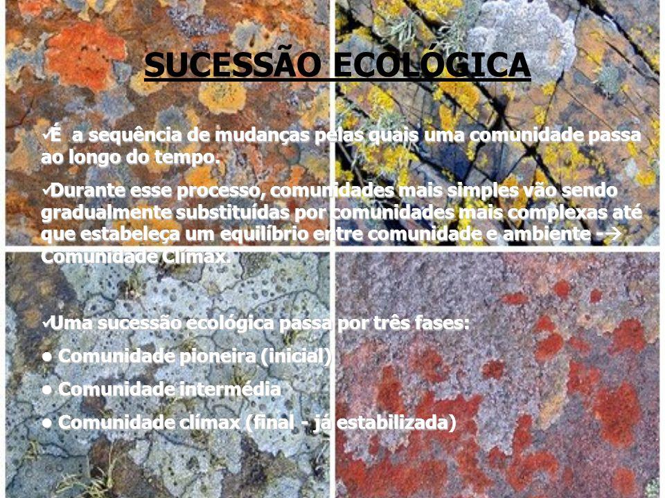 SUCESSÃO ECOLÓGICA É a sequência de mudanças pelas quais uma comunidade passa ao longo do tempo. É a sequência de mudanças pelas quais uma comunidade